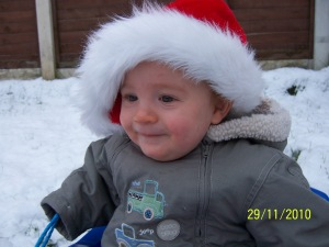 Bruiser in his 1st Santa hat