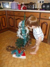 Bruiser's 1st Christmas Tree