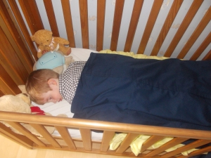 Before that though, it was time for last lie down in his cot! *sniff sniff*